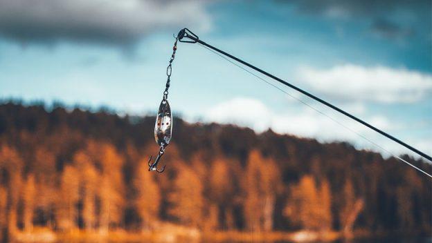 fishing-rod-web