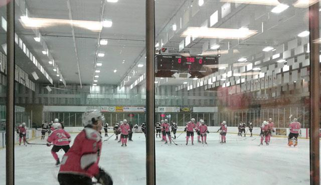 Pink-rink-bears-3