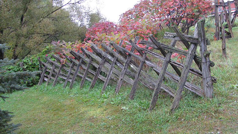 Wooden sheep fence.