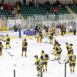 Teddy bear toss brings Bears a 4 -3 win over Lasers