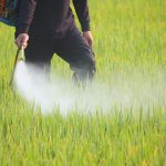 County not consulting real experts on roadside pesticide spraying