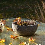 Garden Matters: Use the bounty of fall leaves to enhance your garden
