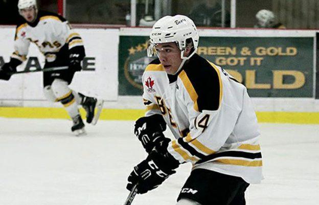bears-hockey-4