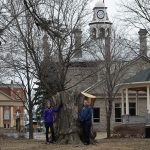 Perth Inside Out: Stewart family gave much more than Jessie the Silver Maple