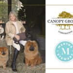 Martha Stewart and Marquee brands partner with Canopy Growth Corporation to launch Martha Stewart CBD