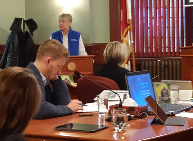 Carleton Place Council's Committee of the Whole, Marilyn Bird, Executive Director of Lanark Transportation (LT) provided an overview of her organization, its services, and clientele