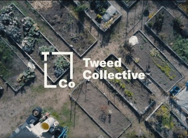 Tweed CollectiveTM