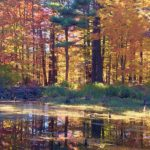 Fall at Foley Mountain