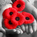 Covid-19 Affects poppy sales, Remembrance Day ceremony