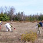 RVCA supports Lanark County Climate Action Plan through landowner tree planting program