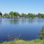 Smiths Falls shoreline planting postponed to May 2022